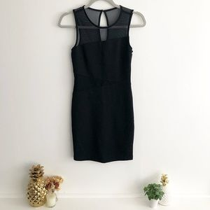 Mesh Trim Fitted Bodycon Dress